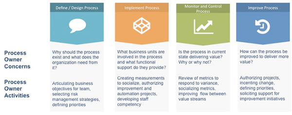 Figure 2: Process Owner Activities and Accountabilities
